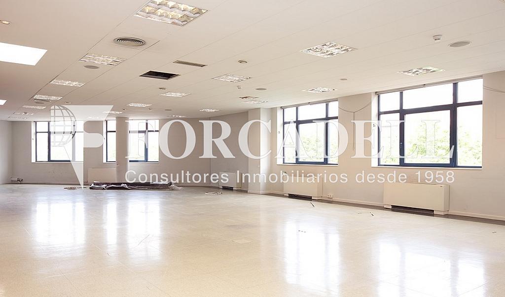 0497 08 - Oficina en alquiler en calle Zona Franca, La Marina de Port en Barcelona - 286366281