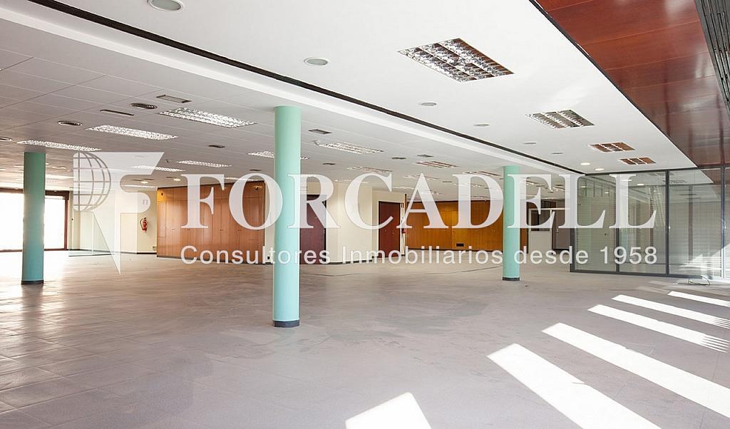 0051 4 - Oficina en alquiler en calle Valencia, Eixample dreta en Barcelona - 263443455