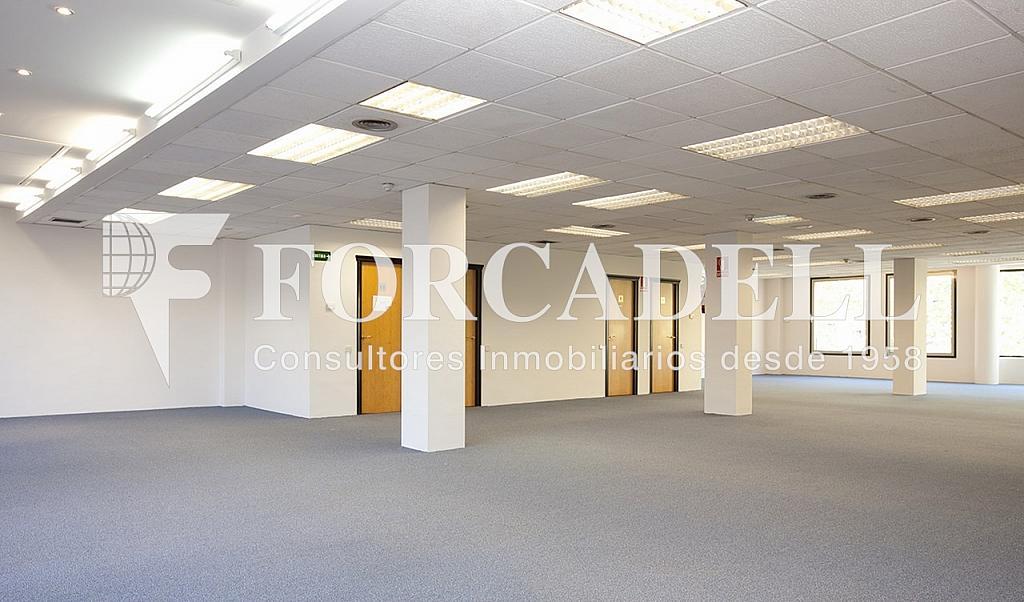 0212 02 copia - Oficina en alquiler en calle Marquès de Sentmenat, Les corts en Barcelona - 263443776