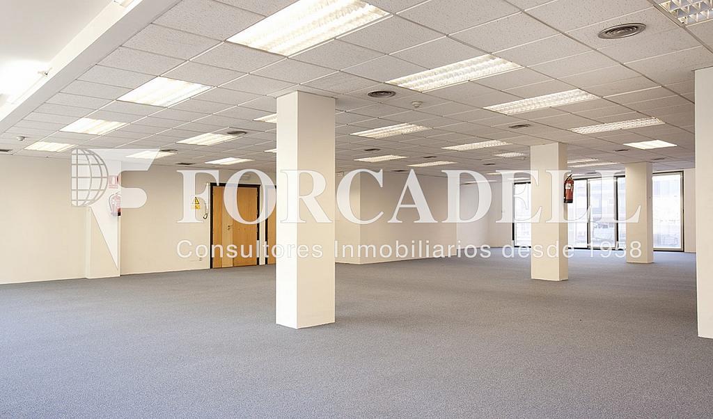 0212 06 copia - Oficina en alquiler en calle Marquès de Sentmenat, Les corts en Barcelona - 263443800