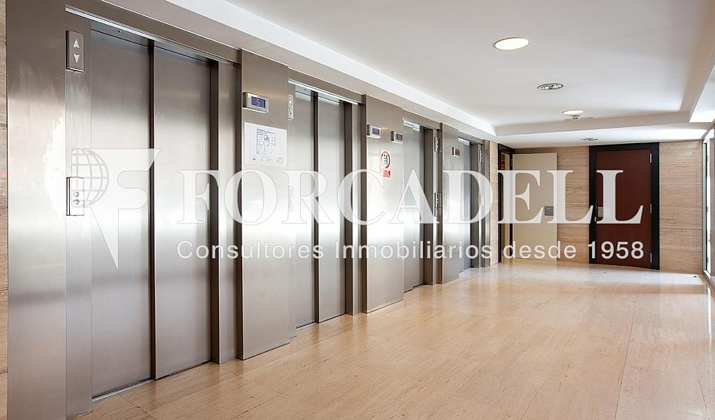 04 - Oficina en alquiler en calle Lepanto, La Sagrada Família en Barcelona - 263443914