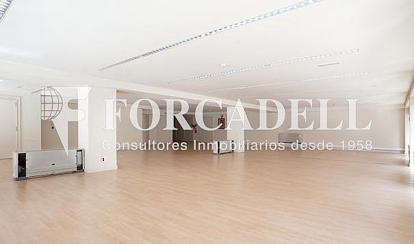 10 - Oficina en alquiler en calle Lepanto, La Sagrada Família en Barcelona - 269540668