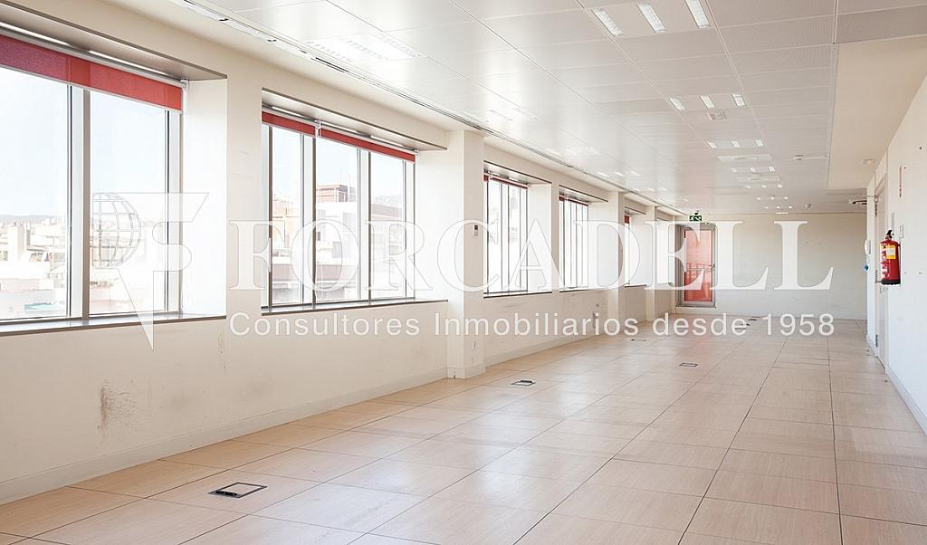 1061 5 - Oficina en alquiler en calle Lepanto, La Sagrada Família en Barcelona - 333906463