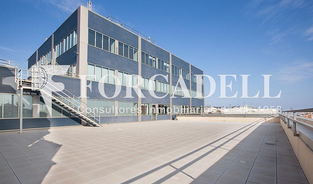Planta 7 02 - Oficina en alquiler en calle Lepanto, La Sagrada Família en Barcelona - 333906469