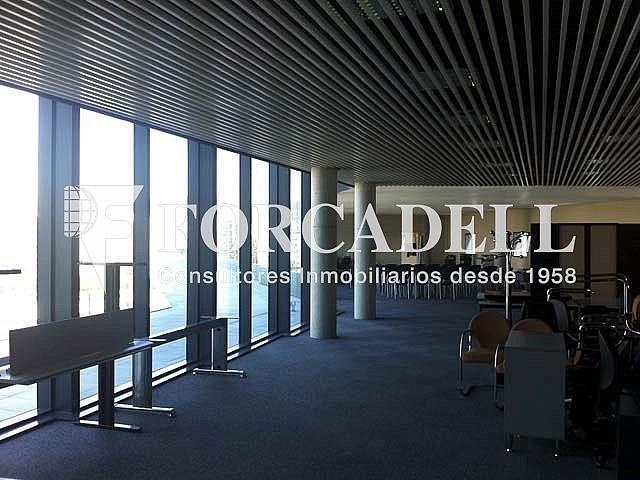 3 - Oficina en alquiler en calle Europa, El Gornal en Hospitalet de Llobregat, L´ - 267668772