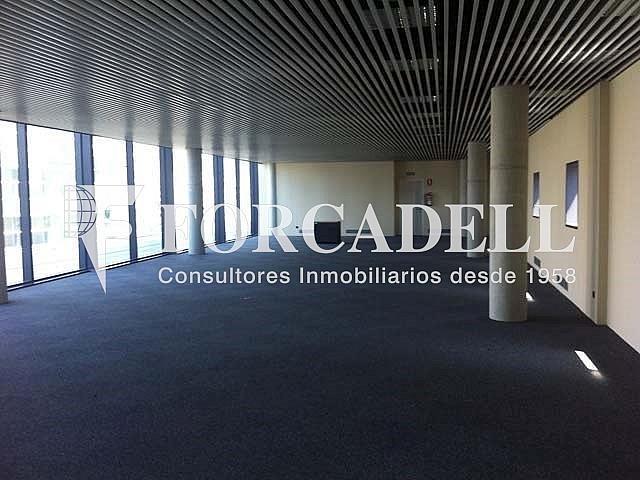 6 - Oficina en alquiler en calle Europa, El Gornal en Hospitalet de Llobregat, L´ - 267668775