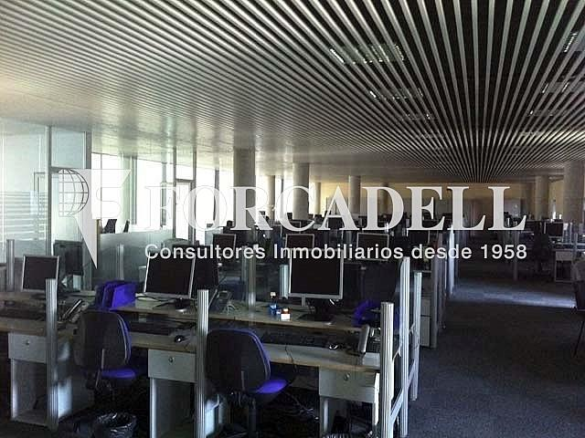 7 - Oficina en alquiler en calle Europa, El Gornal en Hospitalet de Llobregat, L´ - 267668784