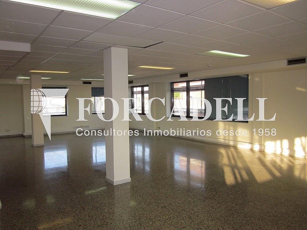 IMG_5504 - Oficina en alquiler en calle Anton Fortuny, Esplugues de Llobregat - 263444295