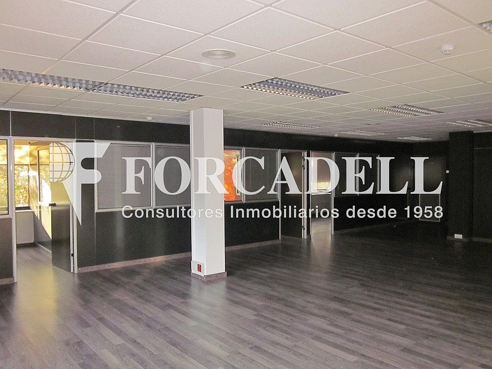 IMG_5491 - Oficina en alquiler en calle Anton Fortuny, Esplugues de Llobregat - 263425305