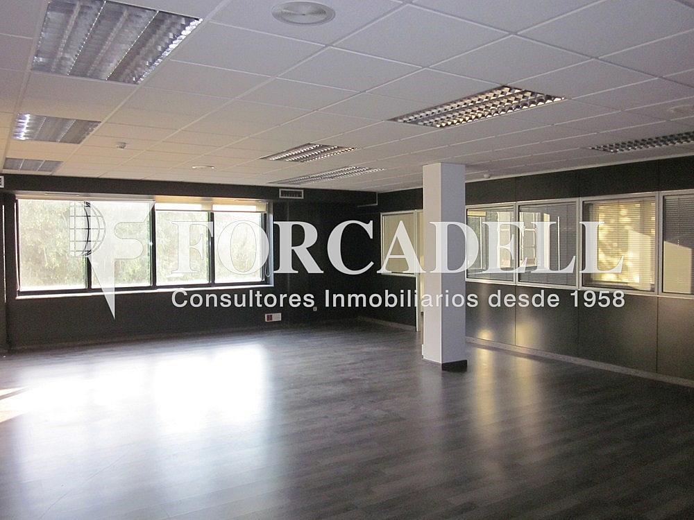 IMG_5487 - Oficina en alquiler en calle Anton Fortuny, Esplugues de Llobregat - 263425317