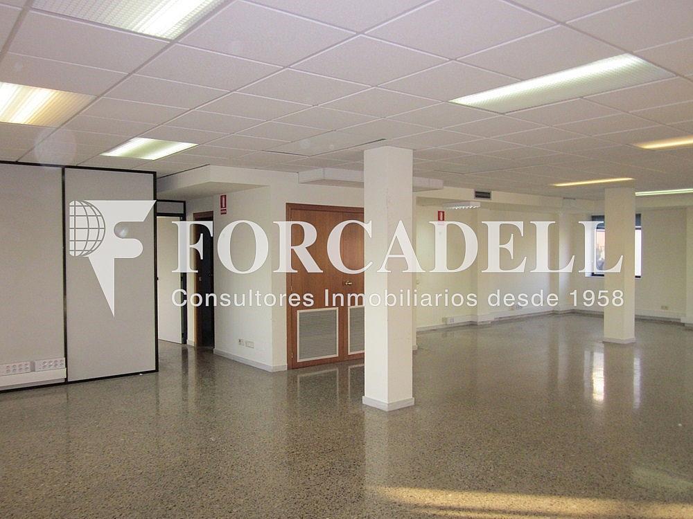 IMG_5506 - Oficina en alquiler en calle Anton Fortuny, Esplugues de Llobregat - 263425293