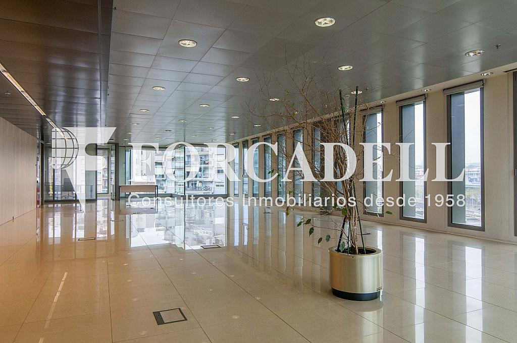 _DSC3703 - Oficina en alquiler en calle Europa, El Gornal en Hospitalet de Llobregat, L´ - 278703473