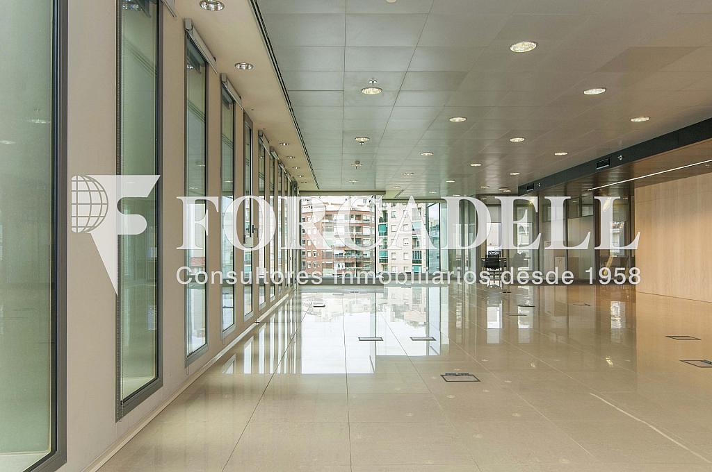 _DSC3724 - Oficina en alquiler en calle Europa, El Gornal en Hospitalet de Llobregat, L´ - 278703479