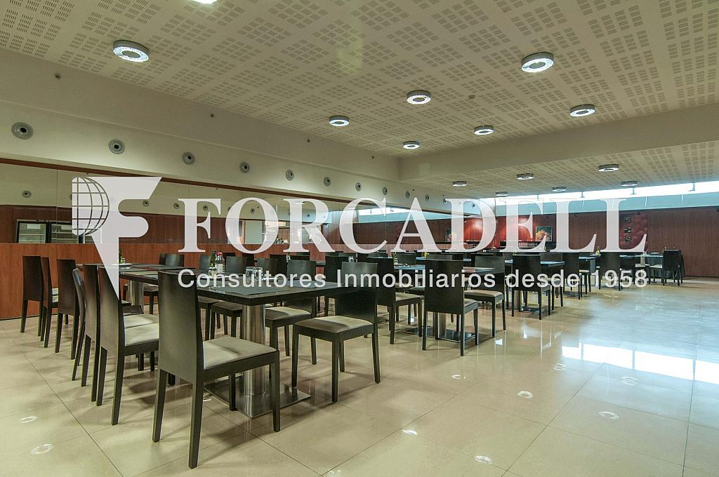 _DSC3744 - Oficina en alquiler en calle Europa, El Gornal en Hospitalet de Llobregat, L´ - 278703485