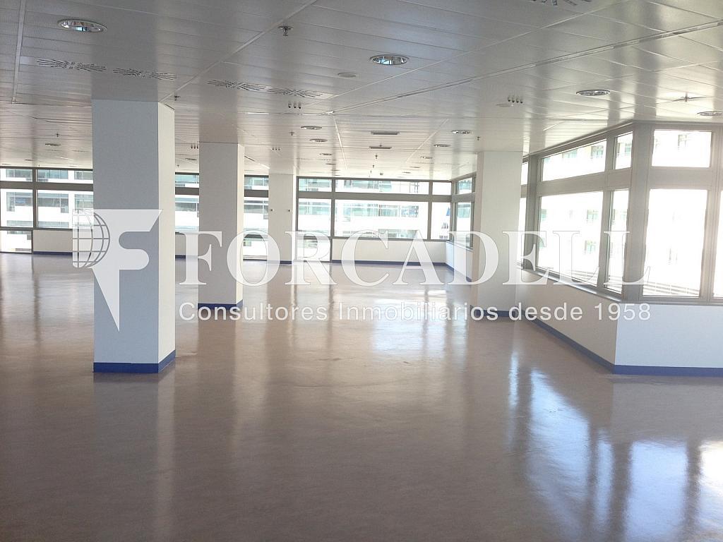 IMG_3325 - Oficina en alquiler en calle De Barcelona World Trade Center, La Barceloneta en Barcelona - 263439243