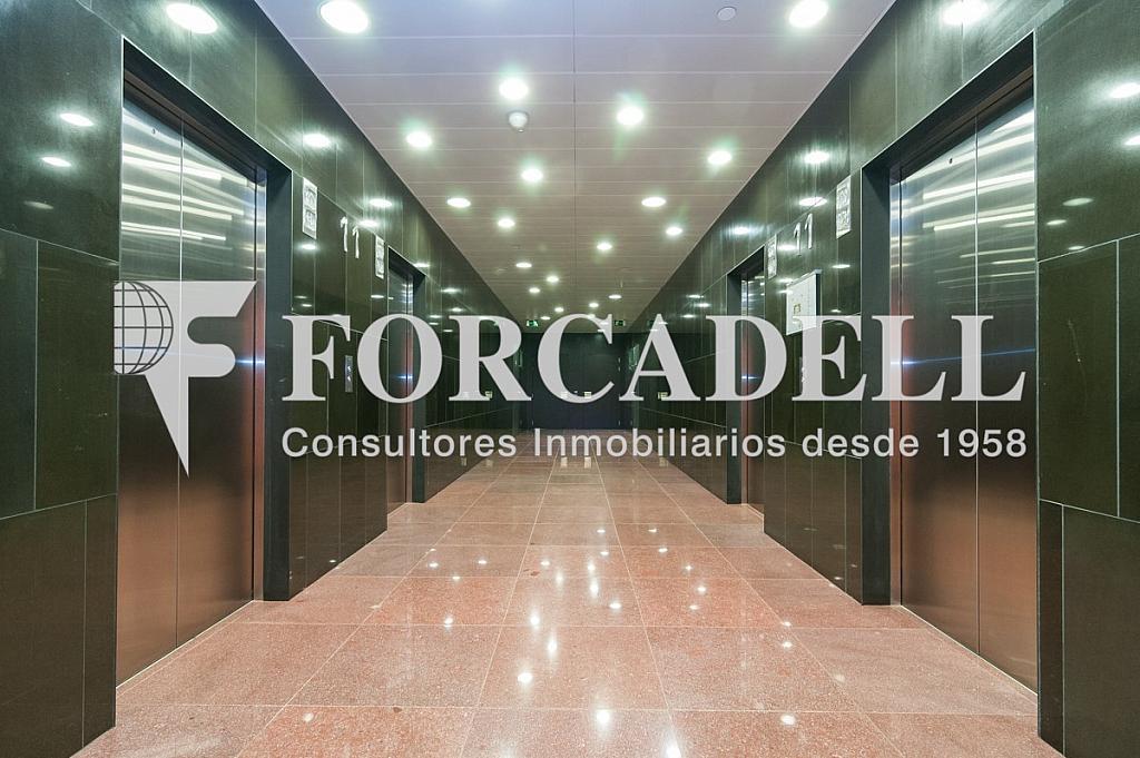 _DSC5657 - Oficina en alquiler en calle Europa Torre Realia, El Gornal en Hospitalet de Llobregat, L´ - 263439333