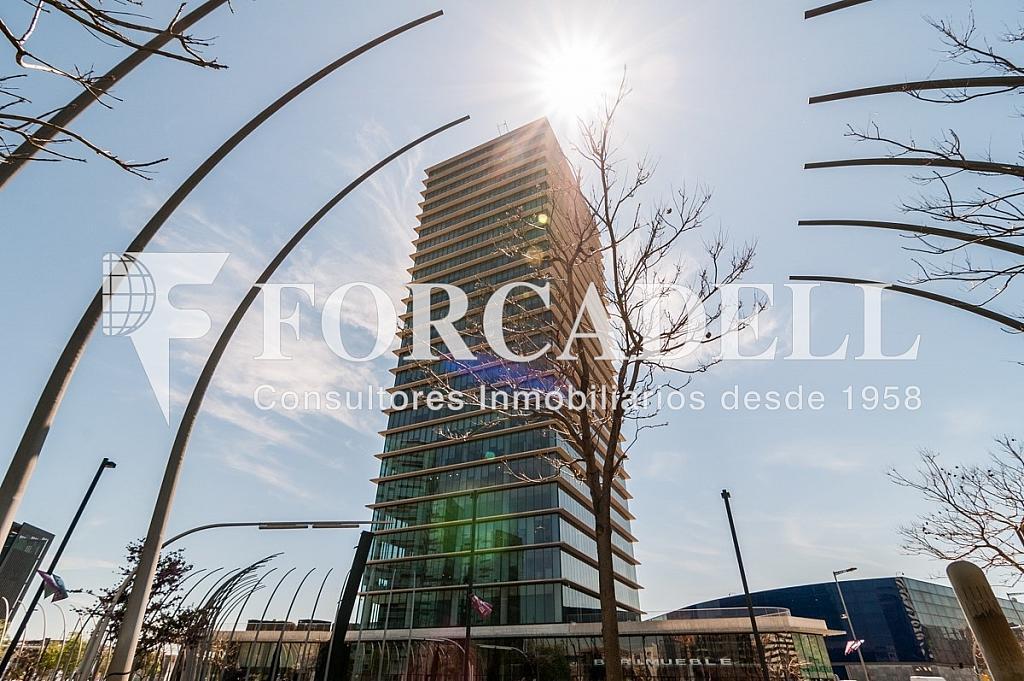_DSC5748 - Oficina en alquiler en calle Europa Torre Realia, El Gornal en Hospitalet de Llobregat, L´ - 263439354