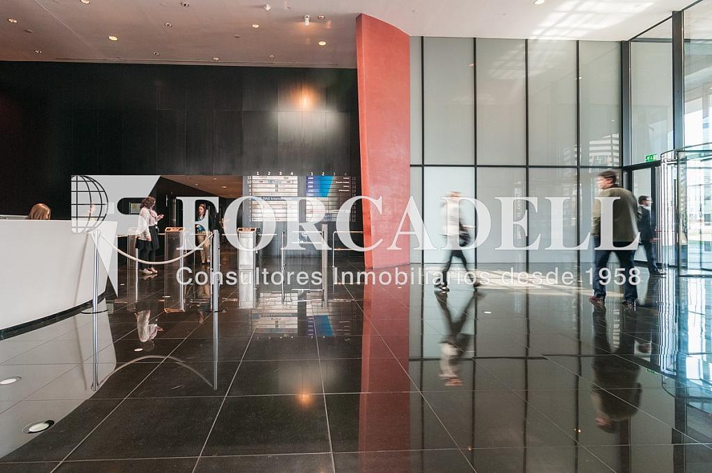 _DSC5740 - Oficina en alquiler en calle Europa Torre Realia, El Gornal en Hospitalet de Llobregat, L´ - 263439399