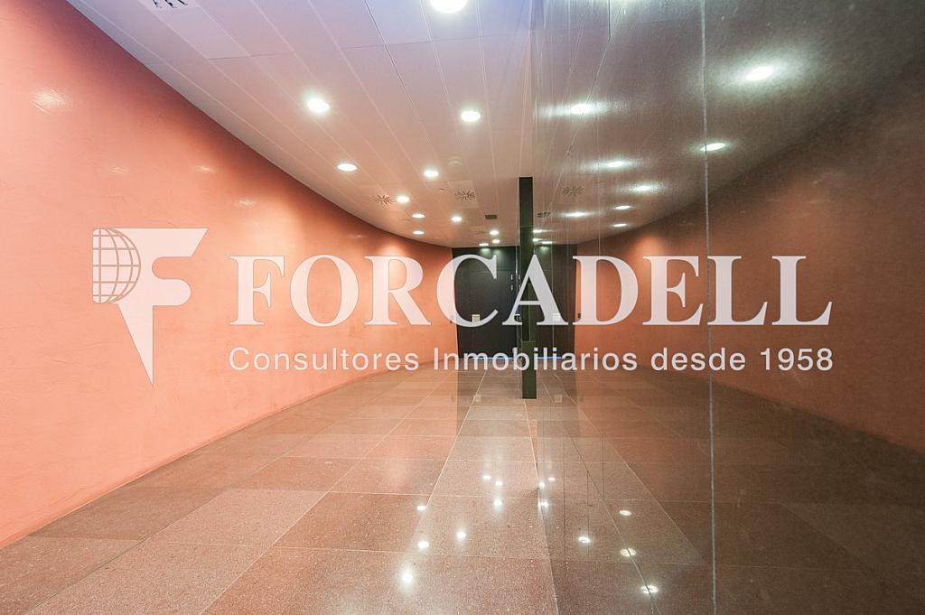 _DSC5656 - Oficina en alquiler en calle Europa Torre Realia, El Gornal en Hospitalet de Llobregat, L´ - 337406921
