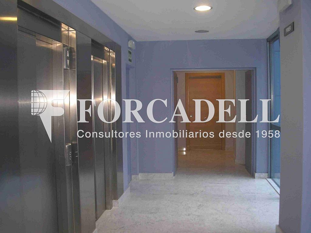 P1010006 - Oficina en alquiler en calle Frederic Mompou Illa, Sant Just Desvern - 263441505