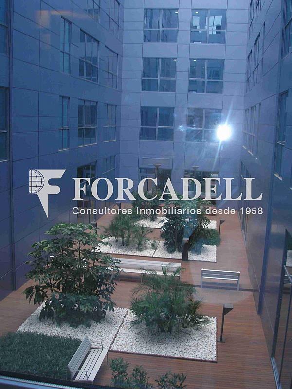 P1010007 - Oficina en alquiler en calle Frederic Mompou Illa, Sant Just Desvern - 263441514