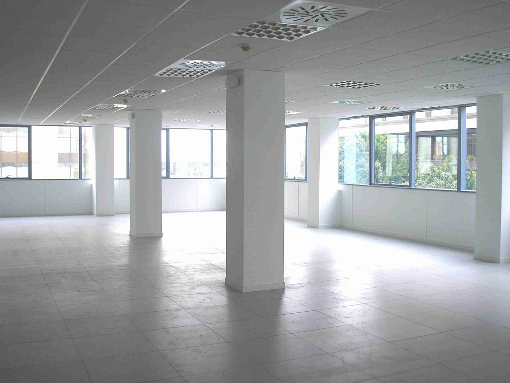 P1010003 - Oficina en alquiler en calle Frederic Mompou Illa, Sant Just Desvern - 263441523