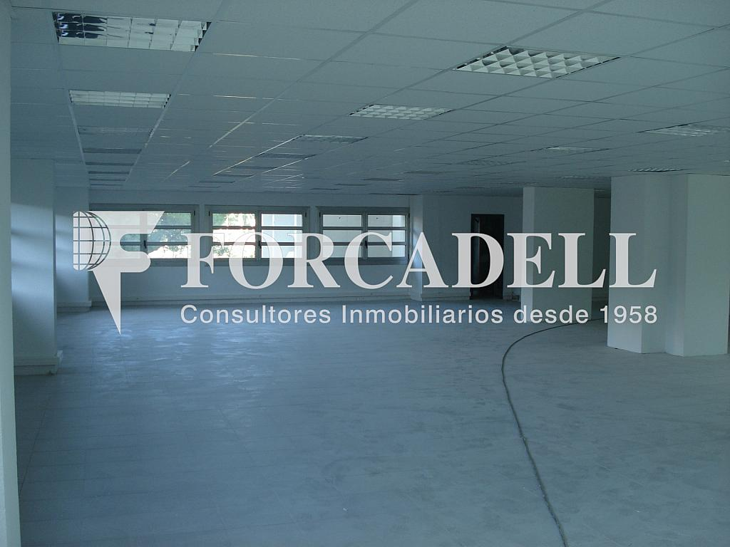 DSC03999 - Oficina en alquiler en edificio Cornella Símbol, Esplugues de Llobregat - 263441592