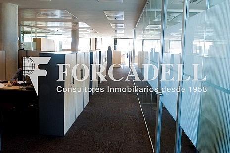 5 - Oficina en alquiler en parque Logistic, La Marina del Prat Vermell en Barcelona - 263442816