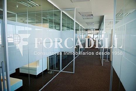 6 - Oficina en alquiler en parque Logistic, La Marina del Prat Vermell en Barcelona - 263442819