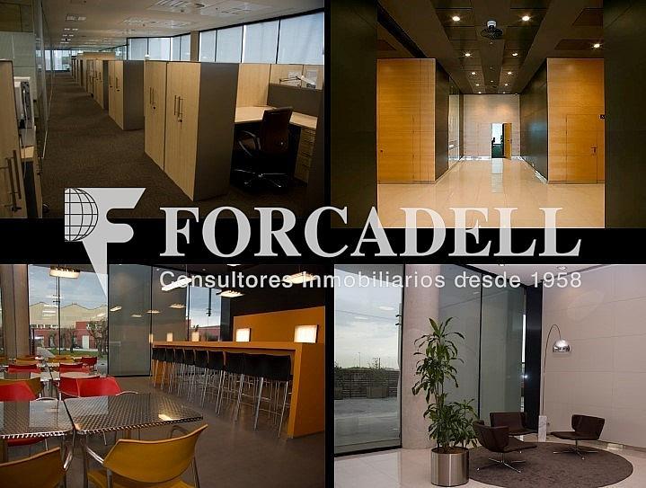 11 - Oficina en alquiler en parque Logistic, La Marina del Prat Vermell en Barcelona - 263442831