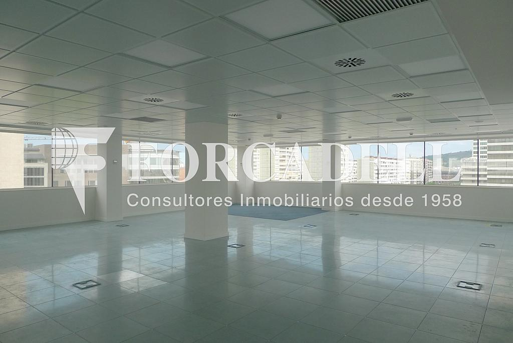 P1250898 - Oficina en alquiler en calle Numància, Sants en Barcelona - 263443029