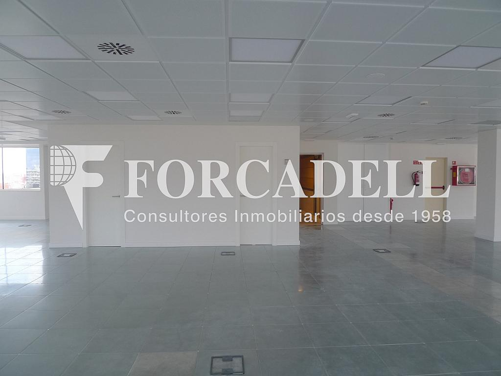 P1250915 - Oficina en alquiler en calle Numància, Sants en Barcelona - 263443032