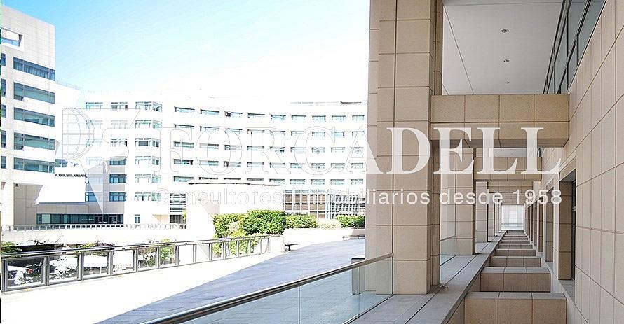 8 - Oficina en alquiler en calle De Barcelona World Trade Center, La Barceloneta en Barcelona - 380199039