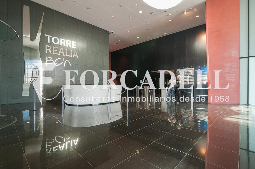 _DSC5722 - Oficina en alquiler en calle Europa, Bellvitge en Hospitalet de Llobregat, L´ - 263442309