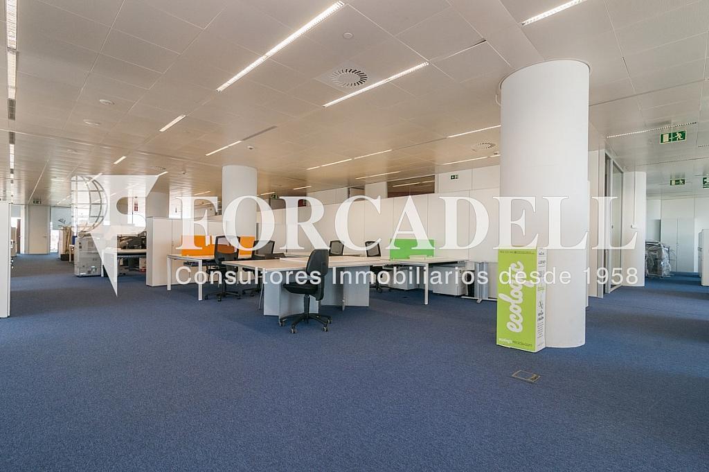 _DSC5718 - Oficina en alquiler en calle Europa, Bellvitge en Hospitalet de Llobregat, L´ - 263442312