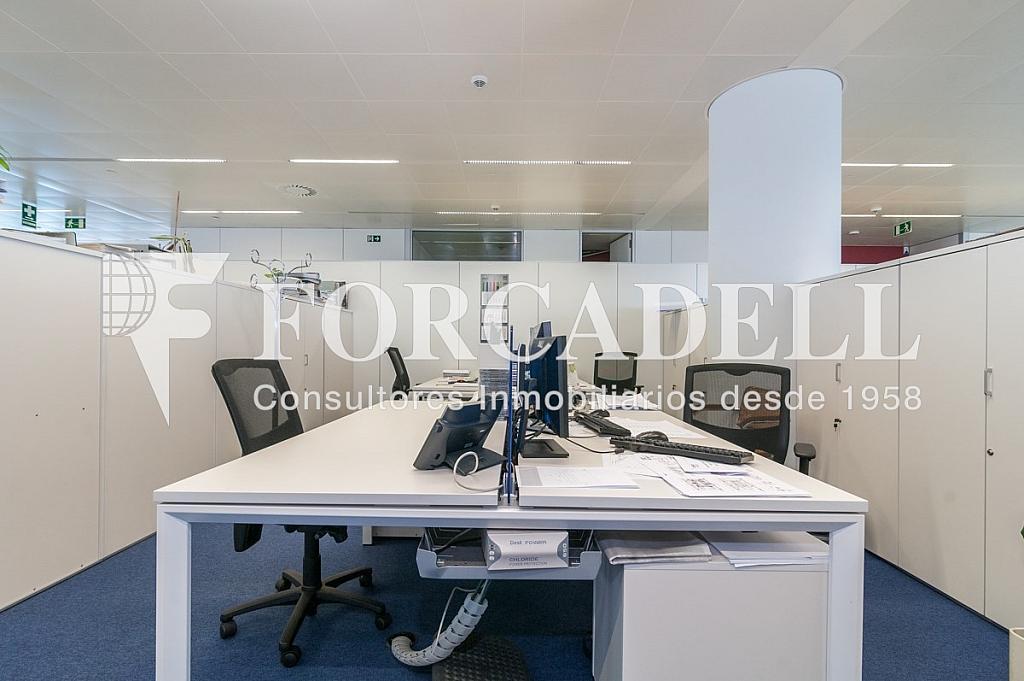 _DSC5713 - Oficina en alquiler en calle Europa, Bellvitge en Hospitalet de Llobregat, L´ - 263442315