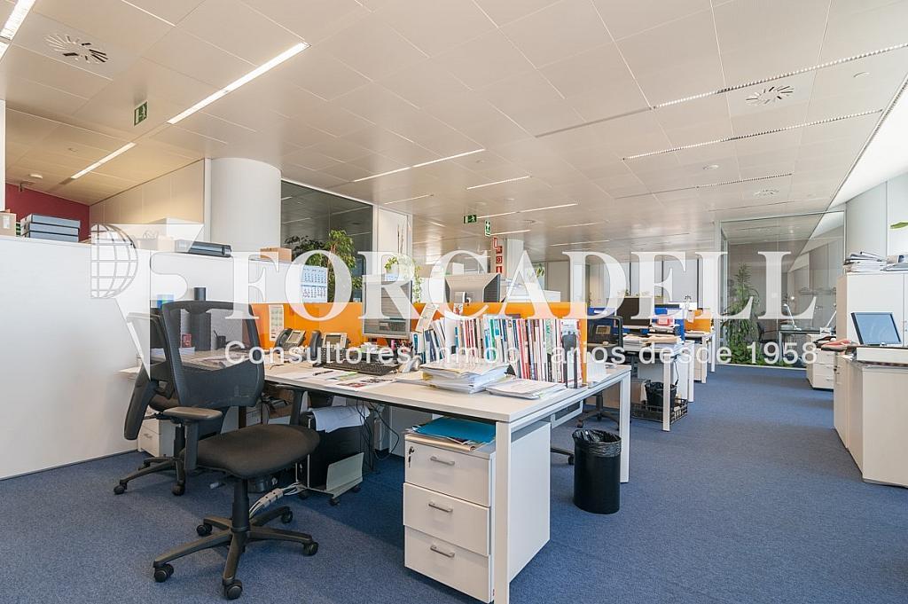 _DSC5710 - Oficina en alquiler en calle Europa, Bellvitge en Hospitalet de Llobregat, L´ - 263442318
