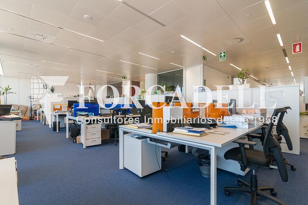 _DSC5709 - Oficina en alquiler en calle Europa, Bellvitge en Hospitalet de Llobregat, L´ - 263442321