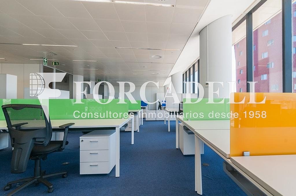 _DSC5671 - Oficina en alquiler en calle Europa, Bellvitge en Hospitalet de Llobregat, L´ - 263442336