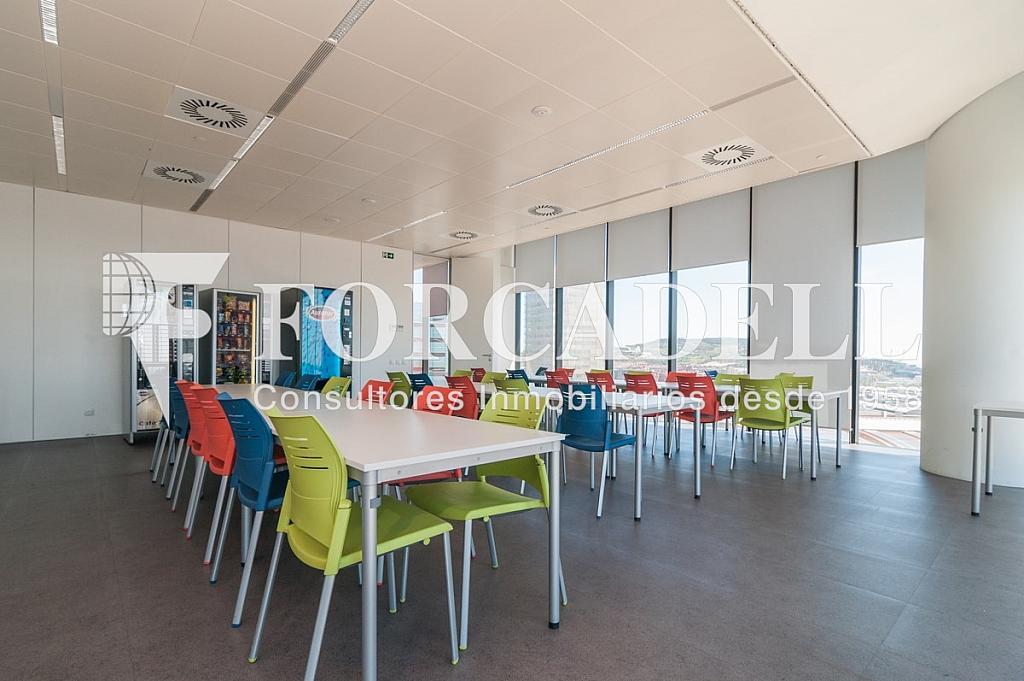 _DSC5633 - Oficina en alquiler en calle Europa, Bellvitge en Hospitalet de Llobregat, L´ - 263442342
