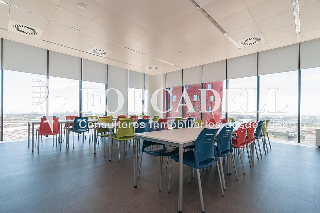 _DSC5630 - Oficina en alquiler en calle Europa, Bellvitge en Hospitalet de Llobregat, L´ - 263442345