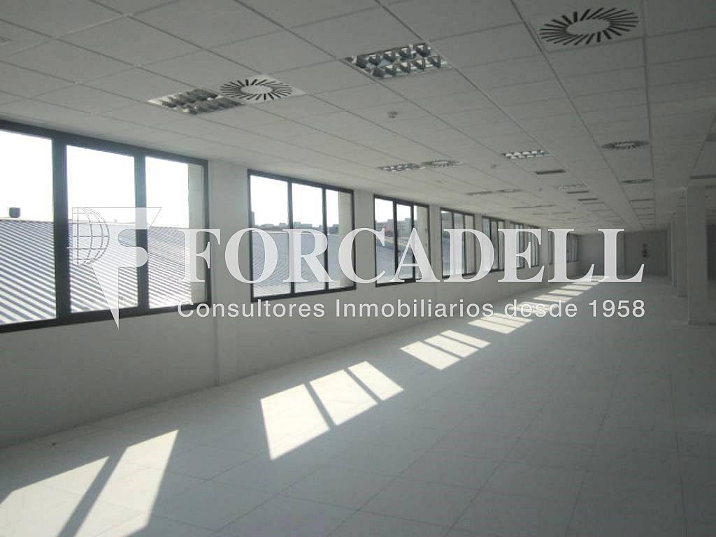 10 - Oficina en alquiler en calle Marina, Centre en Hospitalet de Llobregat, L´ - 263445543