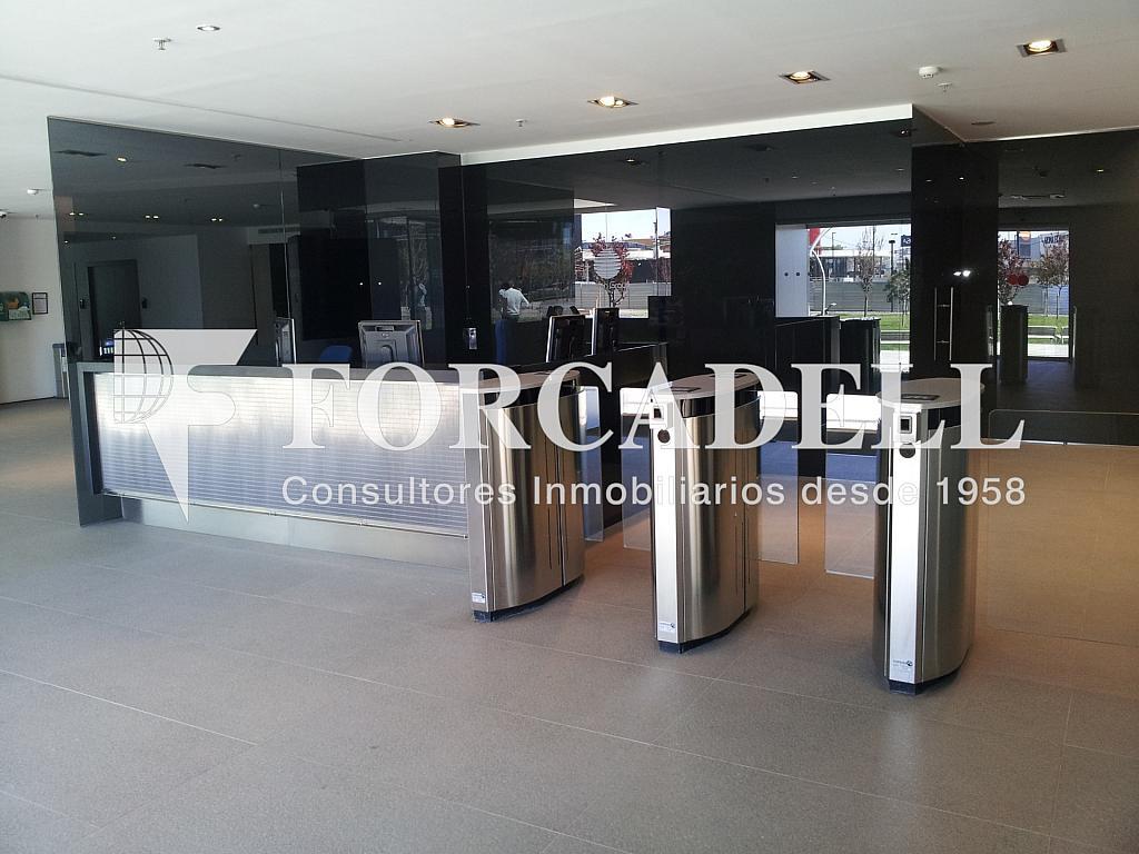 TW foto recepción 1 - Oficina en alquiler en calle Europa, El Gornal en Hospitalet de Llobregat, L´ - 263445882