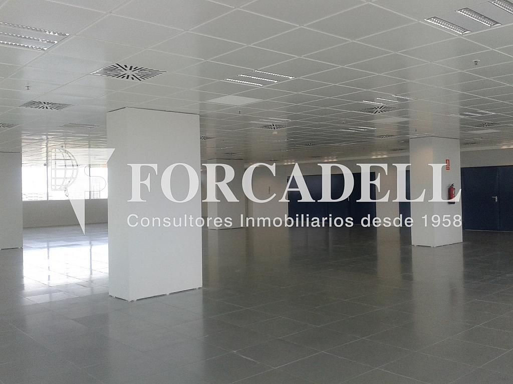 20130509_171723 - Oficina en alquiler en calle Europa, El Gornal en Hospitalet de Llobregat, L´ - 263445885
