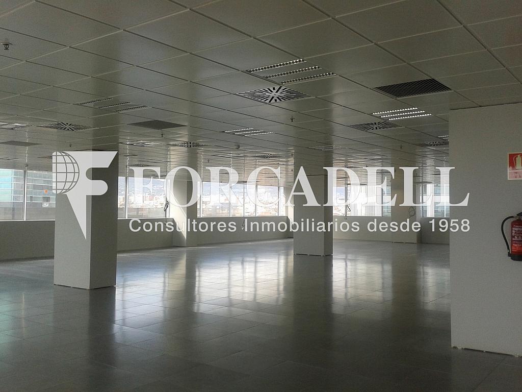 20130509_171654 - Oficina en alquiler en calle Europa, El Gornal en Hospitalet de Llobregat, L´ - 263445888
