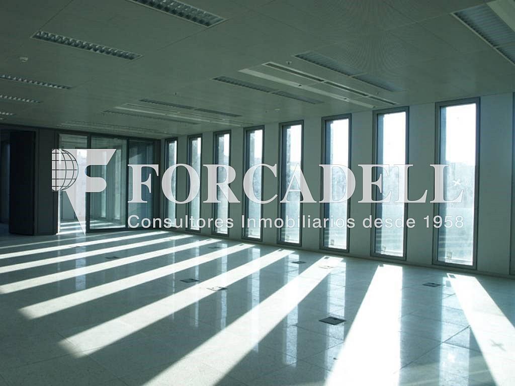 8 - Oficina en alquiler en calle Corts Catalanes, La Bordeta en Barcelona - 263425956