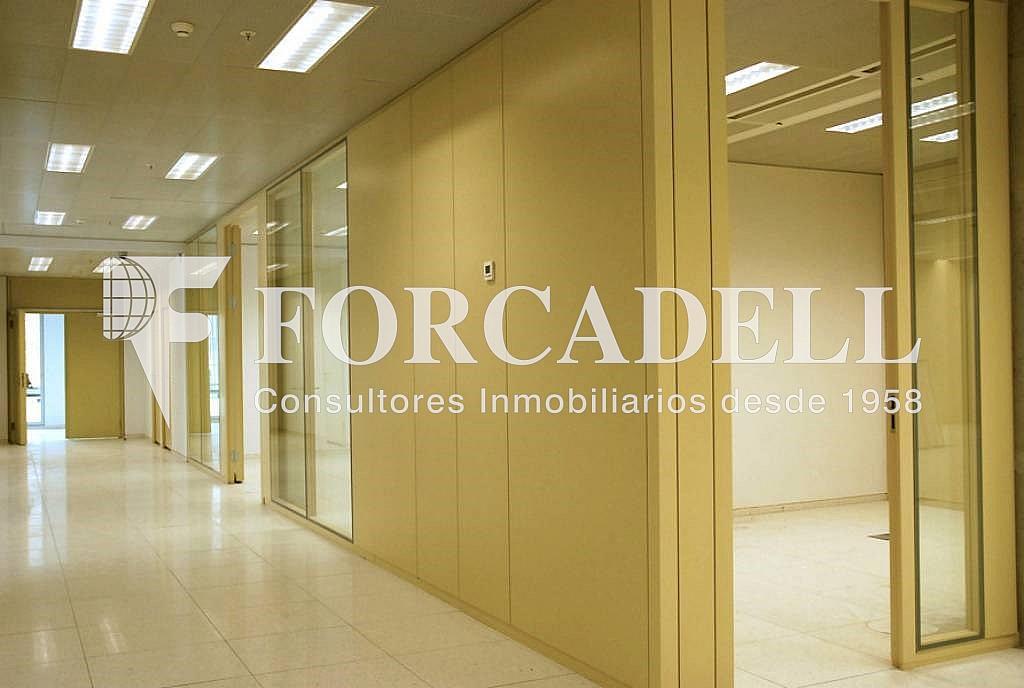 6 - Oficina en alquiler en calle Corts Catalanes, La Bordeta en Barcelona - 263426001