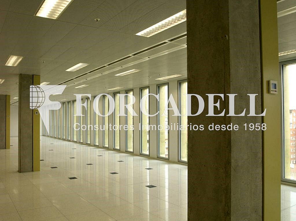 7 - Oficina en alquiler en calle Corts Catalanes, La Bordeta en Barcelona - 263426004