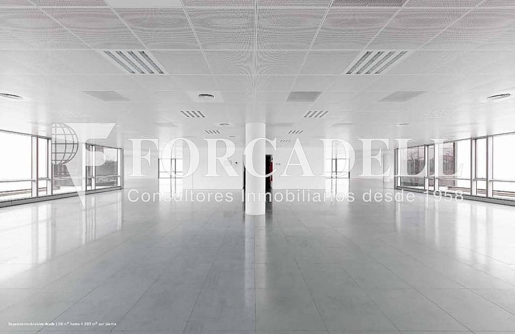 Interior oficina - Oficina en alquiler en calle De la Fama, Cornellà de Llobregat - 263427414