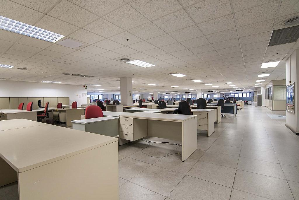 DSC_3735 - Oficina en alquiler en calle Maresme, Almeda en Cornellà de Llobregat - 329737873